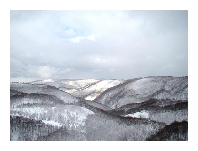 \'푸른숲\' 아오모리 온천 명상여행2 : 스카유(酸ヶ湯)온천